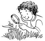 easy-outdoor-science-activities-for-kids-5