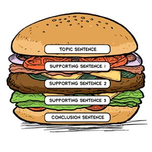 strategy_paragraphhamburger